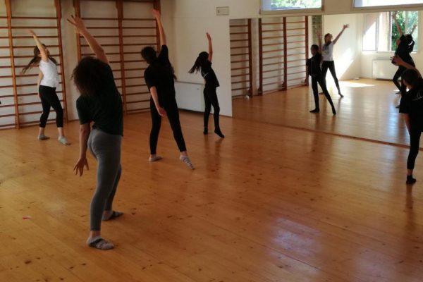 laboratori coreografici